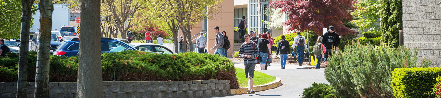 Students walking around outdoors on the SCC campus