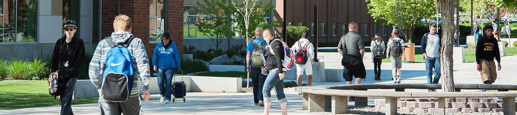 Students walks across the sunny campus