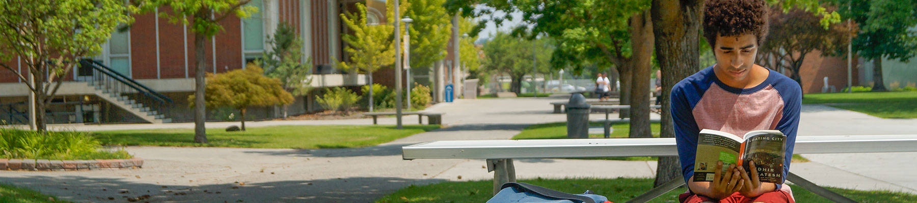 Student reading on a bench.