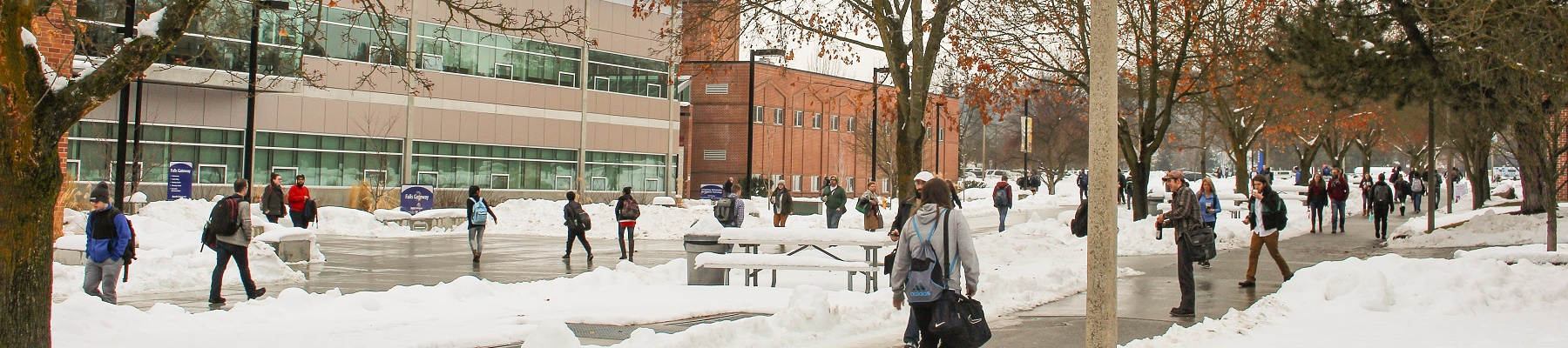 Winter scene on SFCC campus.
