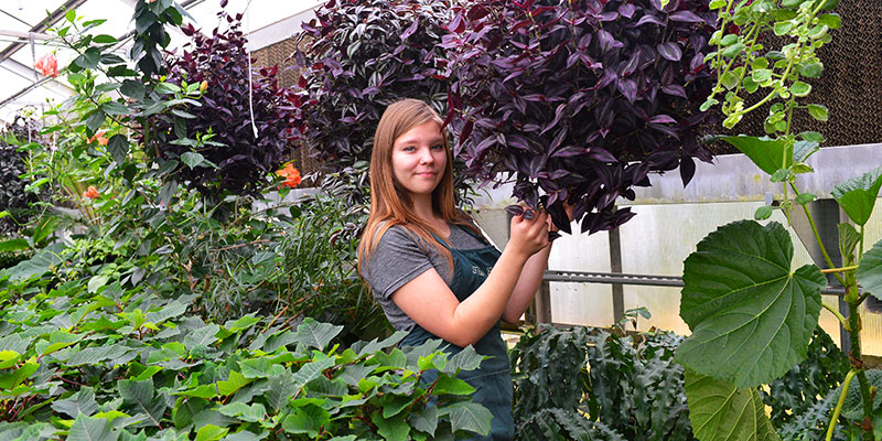 Female student in greenhouse