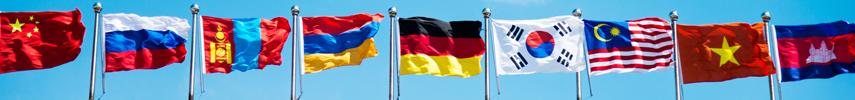 International Flags on flagpoles