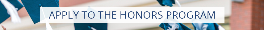Apply To The Honors Program Button