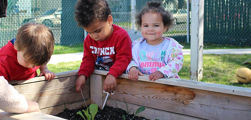 Toddlers Gardening